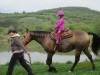 Sára a kůň